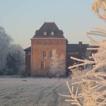 marienkroon winter
